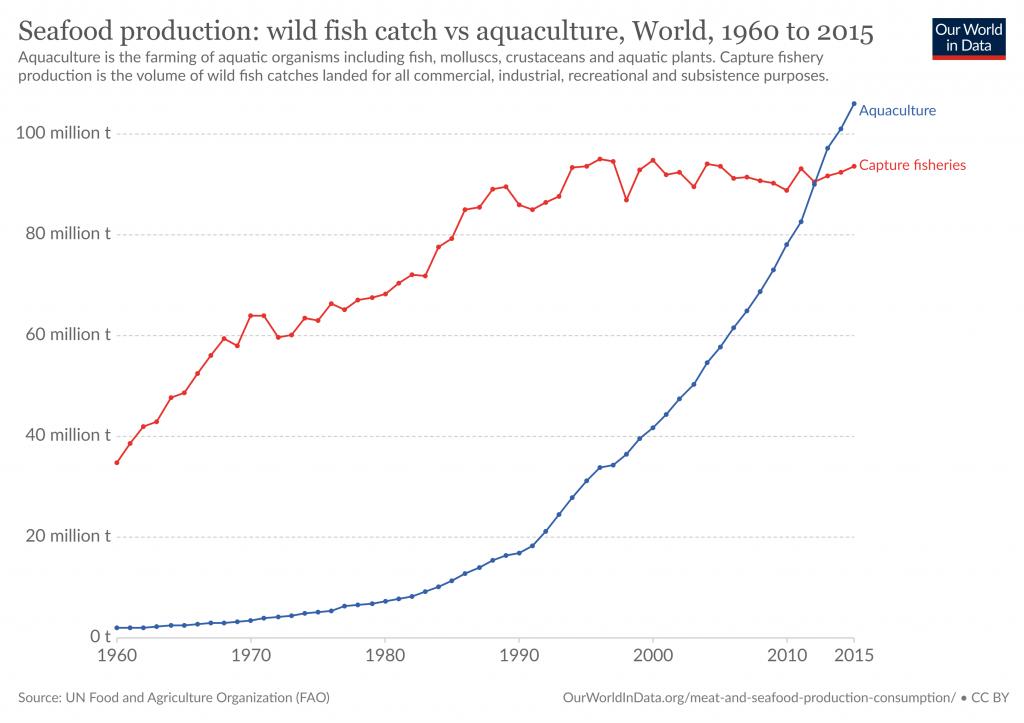 Grafico rappresentante l'andamento della pesca e dell'acquacoltura in milioni di tonnellate dal 1960 ad oggi